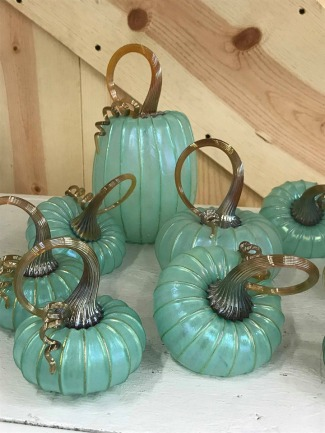 turquoise pumpkins of all sizes